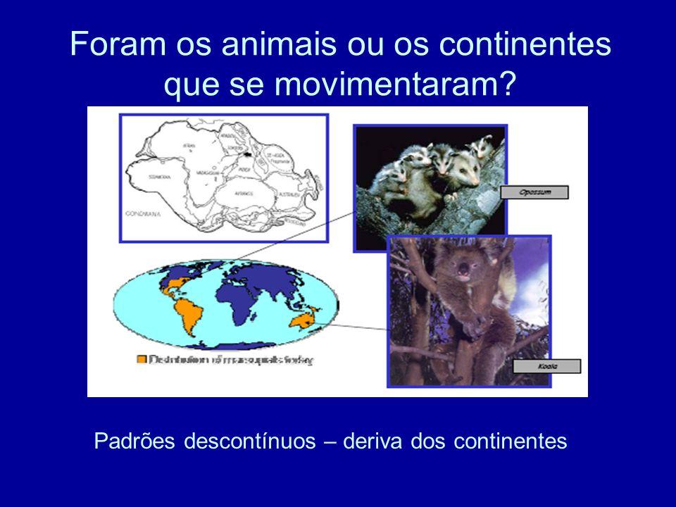 Foram os animais ou os continentes que se movimentaram? Padrões descontínuos – deriva dos continentes