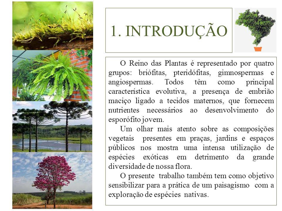 1. INTRODUÇÃO O Reino das Plantas é representado por quatro grupos: briófitas, pteridófitas, gimnospermas e angiospermas. Todos têm como principal car