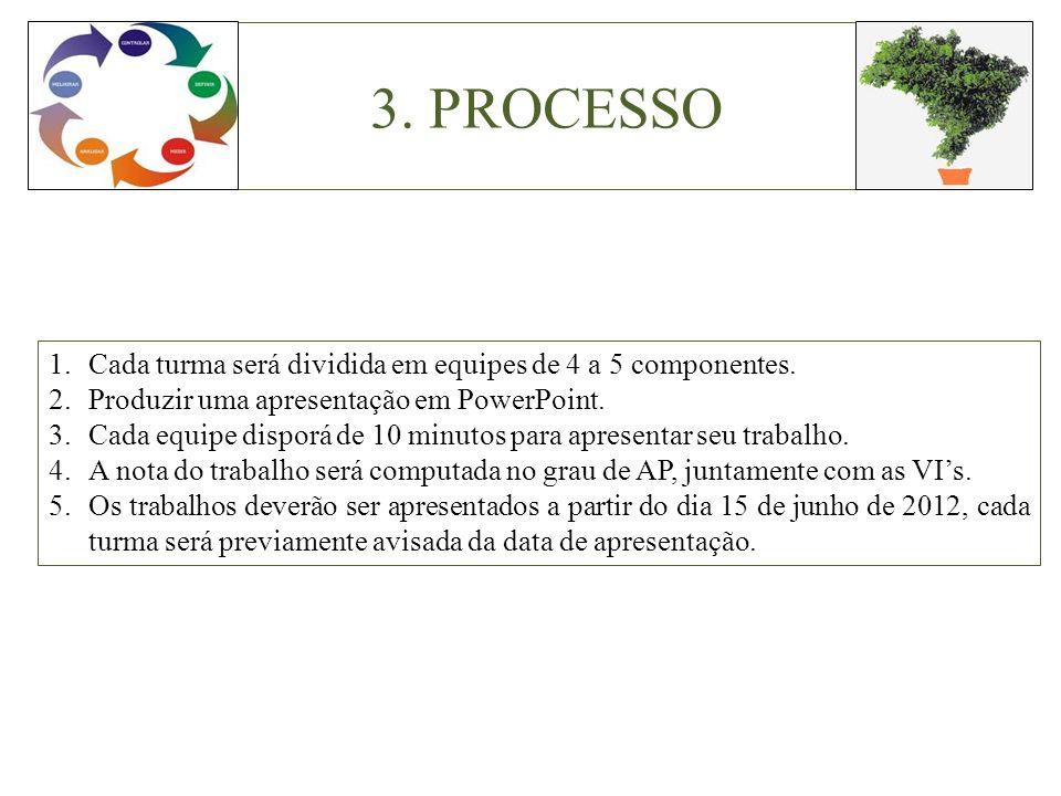 3. PROCESSO 1.Cada turma será dividida em equipes de 4 a 5 componentes. 2.Produzir uma apresentação em PowerPoint. 3.Cada equipe disporá de 10 minutos