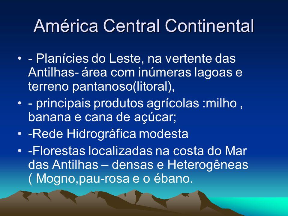 América Central Continental - Planícies do Leste, na vertente das Antilhas- área com inúmeras lagoas e terreno pantanoso(litoral), - principais produt