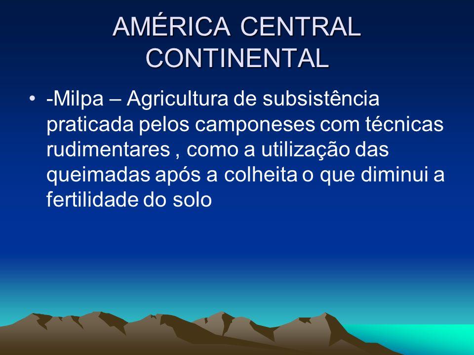AMÉRICA CENTRAL CONTINENTAL -Milpa – Agricultura de subsistência praticada pelos camponeses com técnicas rudimentares, como a utilização das queimadas