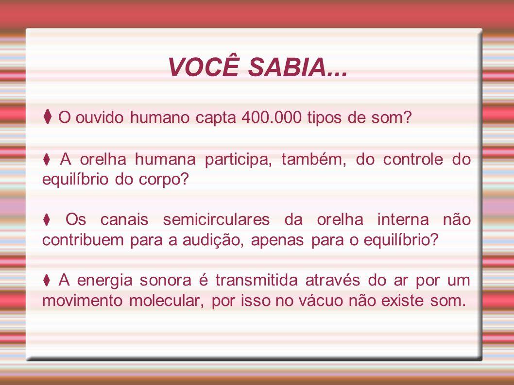 VOCÊ SABIA... O ouvido humano capta 400.000 tipos de som? A orelha humana participa, também, do controle do equilíbrio do corpo? Os canais semicircula