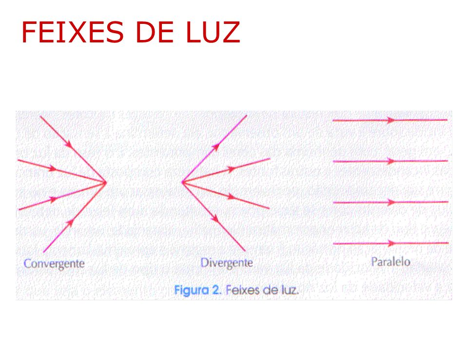FEIXES DE LUZ