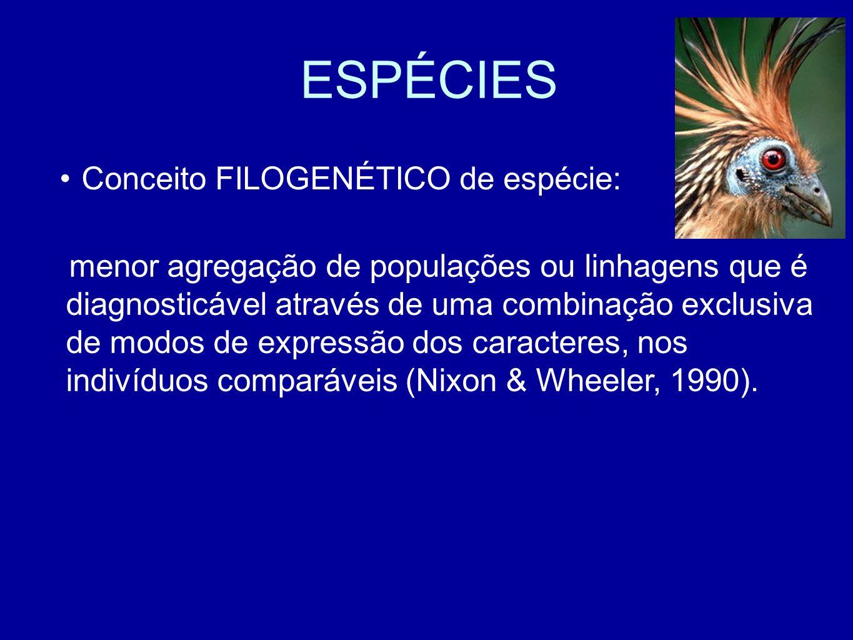ESPÉCIES menor agregação de populações ou linhagens que é diagnosticável através de uma combinação exclusiva de modos de expressão dos caracteres, nos indivíduos comparáveis (Nixon & Wheeler, 1990).