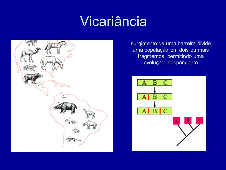 Vicariância surgimento de uma barreira divide uma população em dois ou mais fragmentos, permitindo uma evolução independente