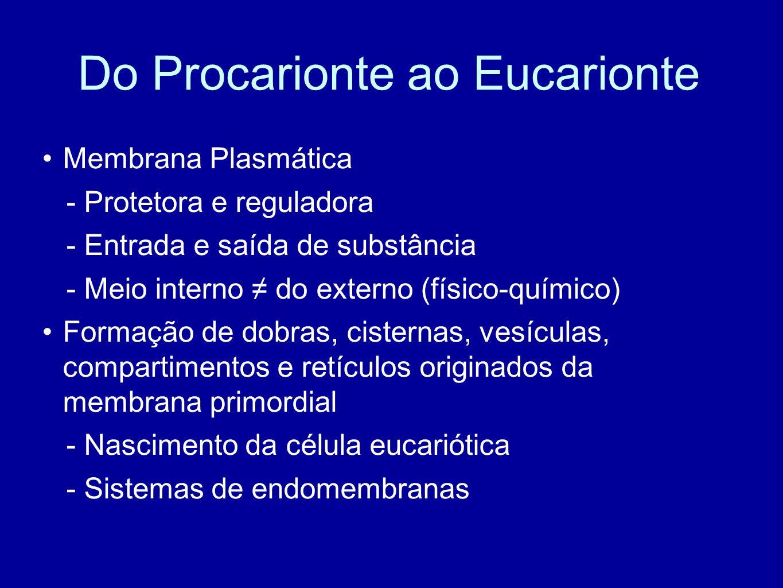Do Procarionte ao Eucarionte Membrana Plasmática - Protetora e reguladora - Entrada e saída de substância - Meio interno do externo (físico-químico) F