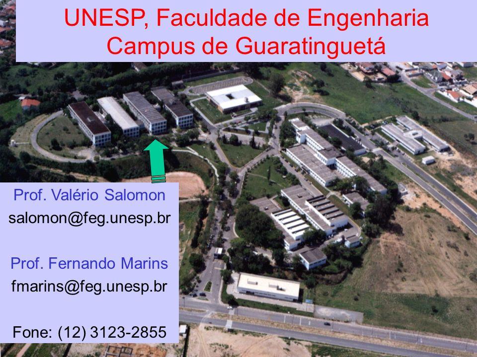 Salomon & Marins(c) 2006 DPD / FEG / UNESP1 UNESP, Faculdade de Engenharia Campus de Guaratinguetá Prof. Valério Salomon salomon@feg.unesp.br Prof. Fe