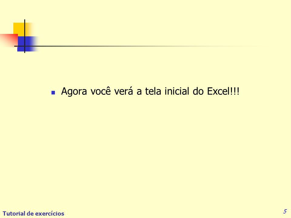 5 Agora você verá a tela inicial do Excel!!!