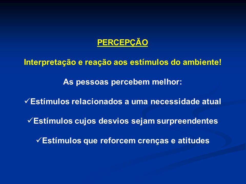 PERSONALIDADE Características individuais que determinam um padrão de comportamento.