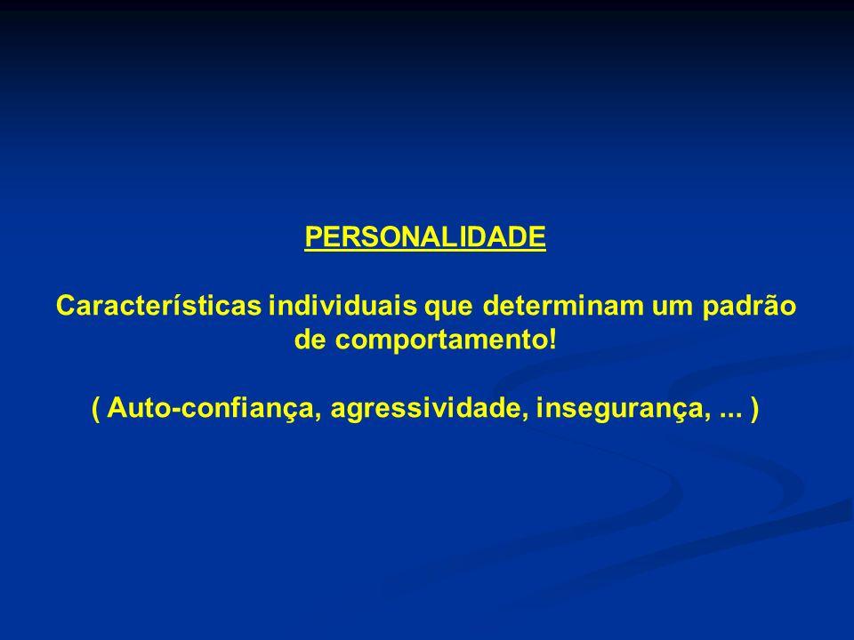 PERSONALIDADE Características individuais que determinam um padrão de comportamento! ( Auto-confiança, agressividade, insegurança,... )