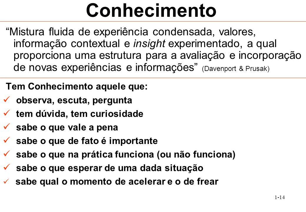 1-14 Conhecimento Mistura fluida de experiência condensada, valores, informação contextual e insight experimentado, a qual proporciona uma estrutura p