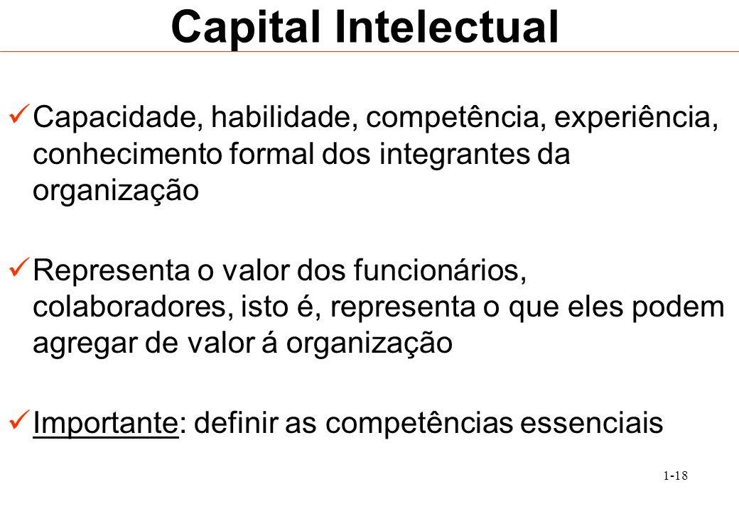 1-18 Capital Intelectual Capacidade, habilidade, competência, experiência, conhecimento formal dos integrantes da organização Representa o valor dos f