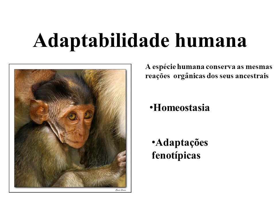 Ubiqüidade humana As sociedades humanas podem se estabelecer em toda parte.