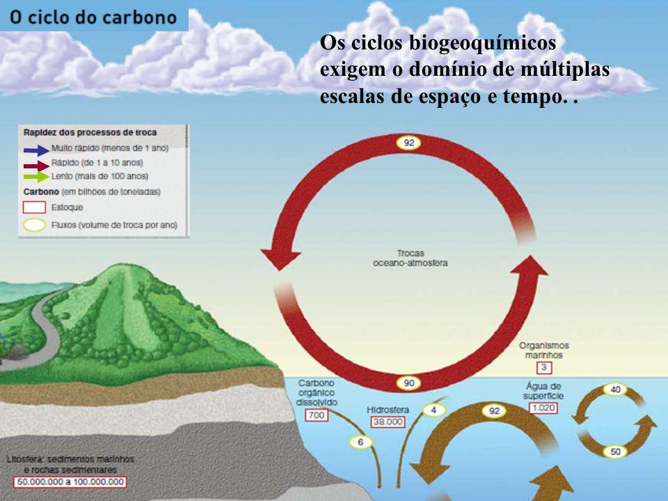 O carbono constitui a base da estrutura bioquímica da vida.