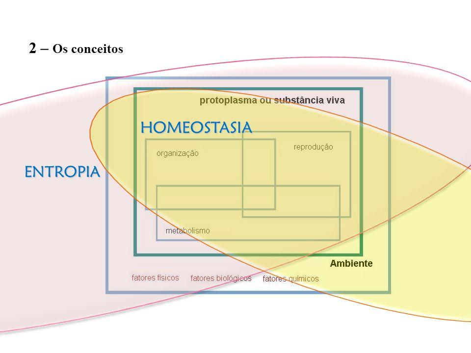 ENTROPIA 2 – Os conceitos HOMEOSTASIA