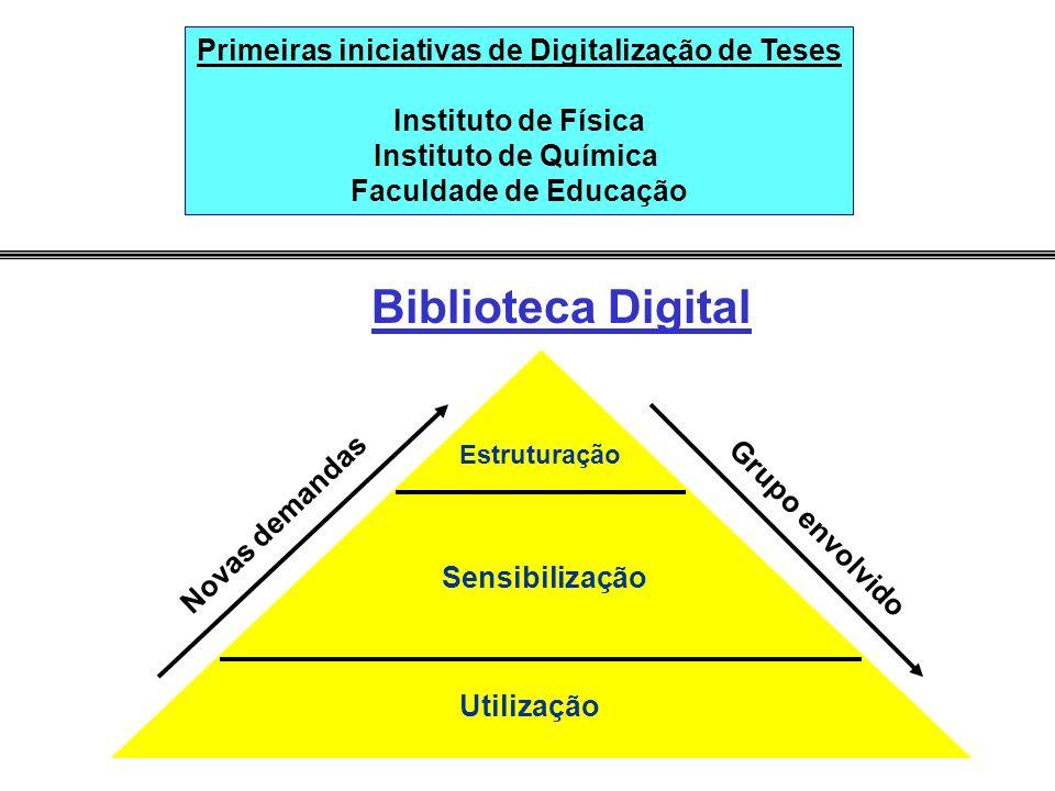 Biblioteca Digital Estruturação Sensibilização Utilização Grupo envolvido Novas demandas Primeiras iniciativas de Digitalização de Teses Instituto de Física Instituto de Química Faculdade de Educação