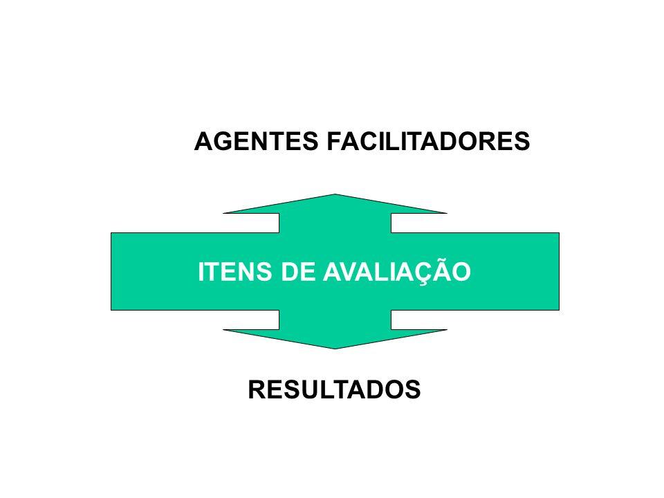 1.Liderança: Definição do negocio, das necessidades dos clientes, Análises do Entorno, Catálogo de produtos,...