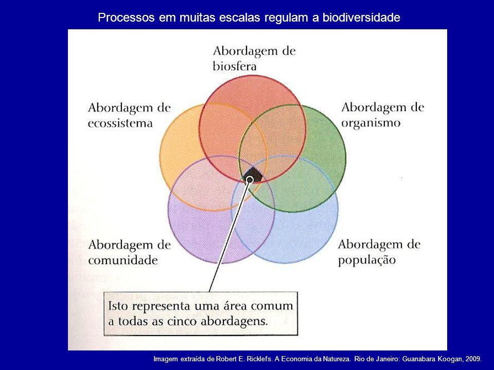 Imagens extraídas de Robert E.Ricklefs. A Economia da Natureza.