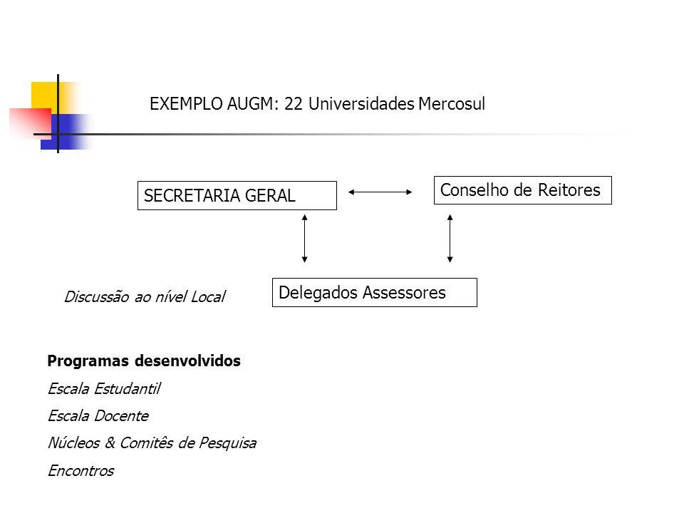 EXEMPLO AUGM: 22 Universidades Mercosul SECRETARIA GERAL Delegados Assessores Conselho de Reitores Discussão ao nível Local Programas desenvolvidos Escala Estudantil Escala Docente Núcleos & Comitês de Pesquisa Encontros
