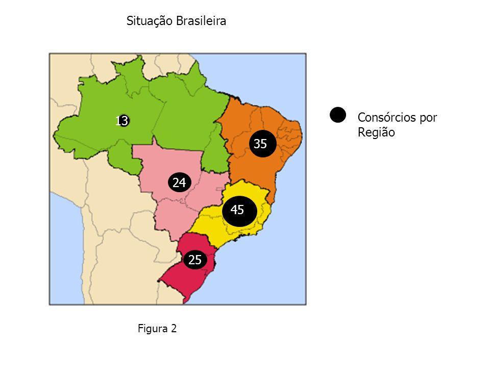 Situação Brasileira Consórcios por Região 25 45 35 24 13 Figura 2