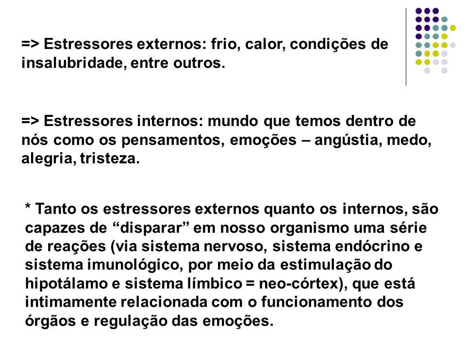 => Estressores externos: frio, calor, condições de insalubridade, entre outros. => Estressores internos: mundo que temos dentro de nós como os pensame