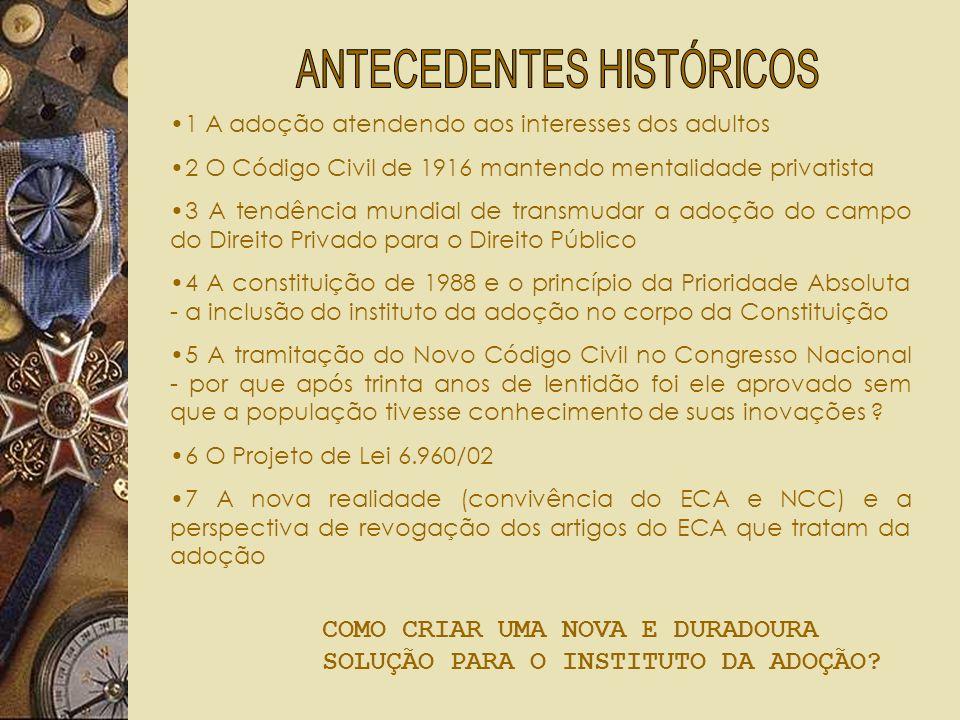 O INSTITUTO DA ADOÇÃO E O NCC POR UMA LEI NACIONAL DA ADOÇÃO Luiz Carlos de Barros Figueirêdo