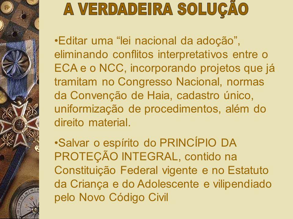 A) Ofende regras da LICC e o Princípio da hierarquia das leis; B) Não existe um ramo do direito autônomo e independente denominado de Direito da Crian