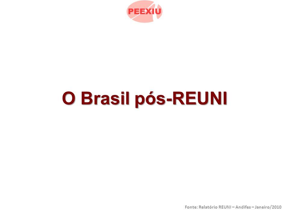 O Brasil pós-REUNI Fonte: Relatório REUNI – Andifes – Janeiro/2010