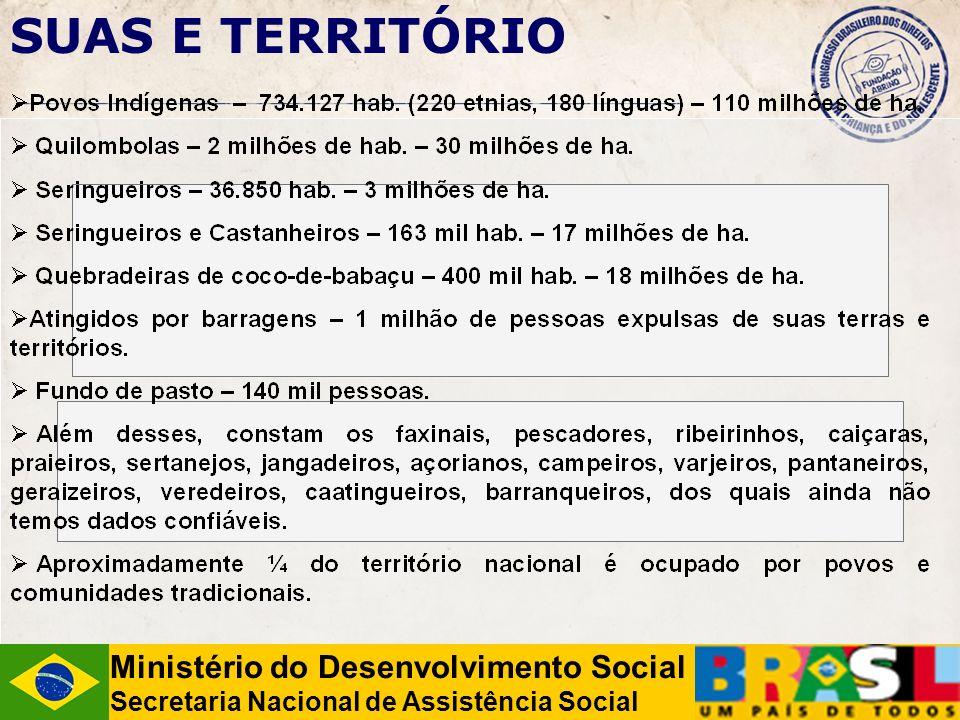 Ministério do Desenvolvimento Social Secretaria Nacional de Assistência Social SUAS E TERRITÓRIO