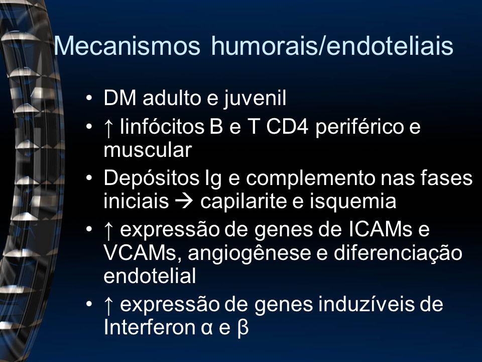 Mecanismos humorais/endoteliais DM adulto e juvenil linfócitos B e T CD4 periférico e muscular Depósitos Ig e complemento nas fases iniciais capilarite e isquemia expressão de genes de ICAMs e VCAMs, angiogênese e diferenciação endotelial expressão de genes induzíveis de Interferon α e β