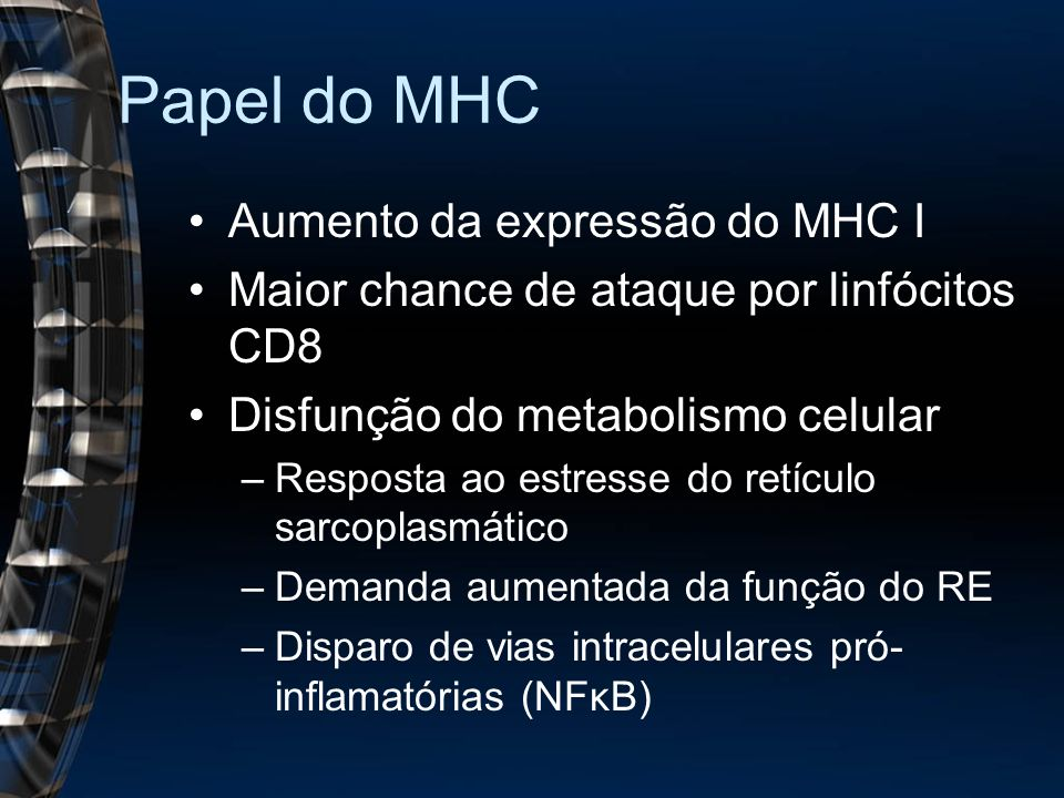 Papel do MHC Aumento da expressão do MHC I Maior chance de ataque por linfócitos CD8 Disfunção do metabolismo celular –Resposta ao estresse do retícul