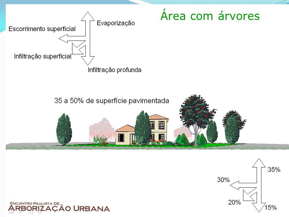 Área com árvores