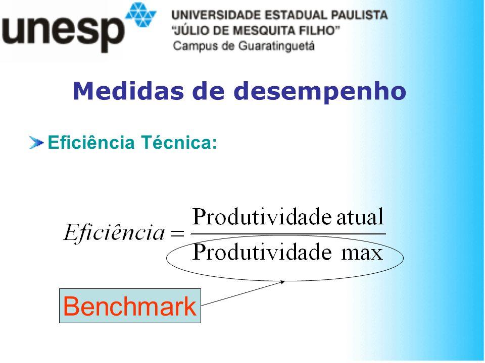 Medidas de desempenho Eficiência Técnica: Benchmark