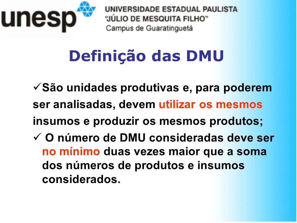 Definição das DMU São unidades produtivas e, para poderem ser analisadas, devem utilizar os mesmos insumos e produzir os mesmos produtos; O número de