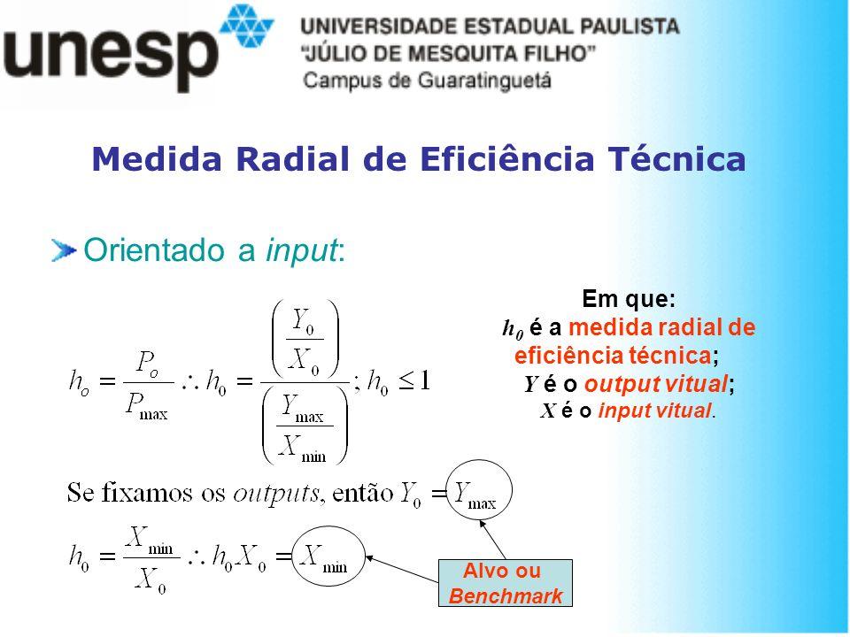 Medida Radial de Eficiência Técnica Orientado a input: Em que: h 0 é a medida radial de eficiência técnica; Y é o output vitual; X é o input vitual. A