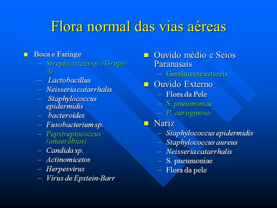 Flora normal das vias aéreas Boca e Faringe Boca e Faringe –Streptococcus sp. (Grupo A) – Lactobacillus –Neisseria catarrhalis – Staphylococcus epider