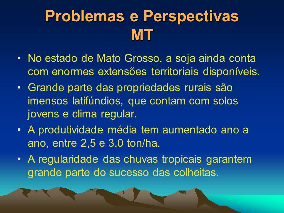 Problemas e Perspectivas MT No estado de Mato Grosso, a soja ainda conta com enormes extensões territoriais disponíveis. Grande parte das propriedades