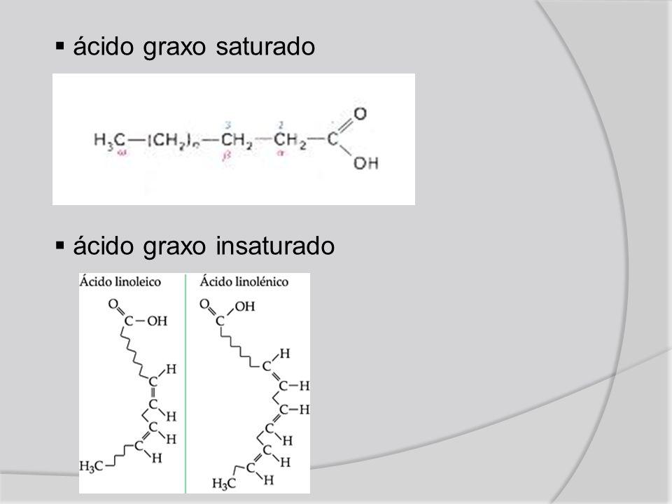 ácido graxo saturado ácido graxo insaturado