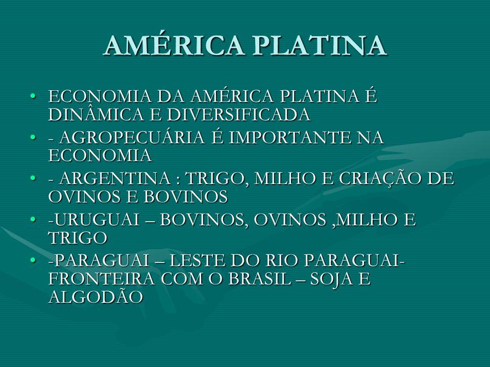 AMÉRICA PLATINA ECONOMIA DA AMÉRICA PLATINA É DINÂMICA E DIVERSIFICADAECONOMIA DA AMÉRICA PLATINA É DINÂMICA E DIVERSIFICADA - AGROPECUÁRIA É IMPORTANTE NA ECONOMIA- AGROPECUÁRIA É IMPORTANTE NA ECONOMIA - ARGENTINA : TRIGO, MILHO E CRIAÇÃO DE OVINOS E BOVINOS- ARGENTINA : TRIGO, MILHO E CRIAÇÃO DE OVINOS E BOVINOS -URUGUAI – BOVINOS, OVINOS,MILHO E TRIGO-URUGUAI – BOVINOS, OVINOS,MILHO E TRIGO -PARAGUAI – LESTE DO RIO PARAGUAI- FRONTEIRA COM O BRASIL – SOJA E ALGODÃO-PARAGUAI – LESTE DO RIO PARAGUAI- FRONTEIRA COM O BRASIL – SOJA E ALGODÃO