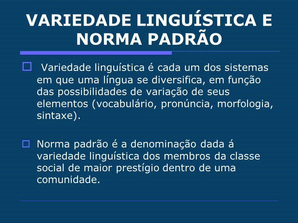 Variedade linguística é cada um dos sistemas em que uma língua se diversifica, em função das possibilidades de variação de seus elementos (vocabulário