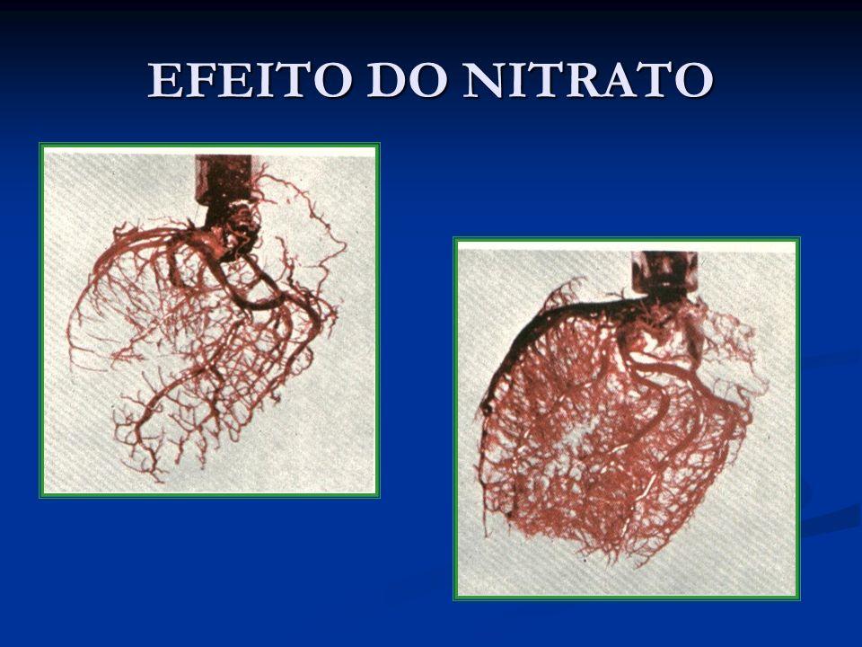 EFEITO DO NITRATO