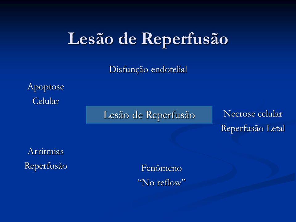 Lesão de Reperfusão Disfunção endotelial ApoptoseCelular ArritmiasReperfusão Fenômeno No reflow Necrose celular Reperfusão Letal