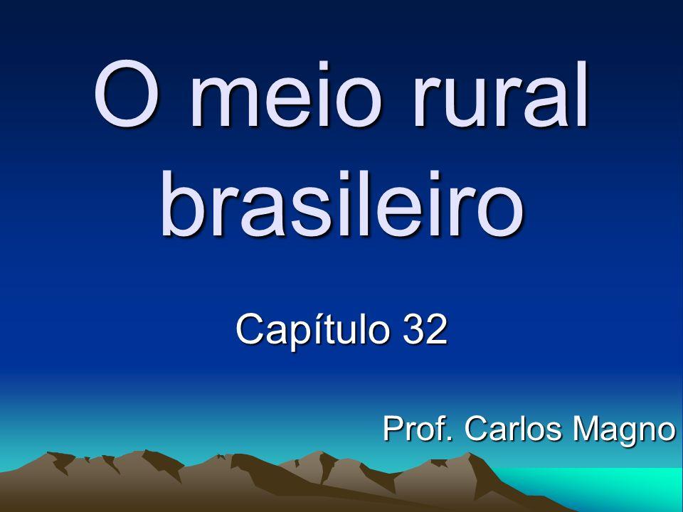 O meio rural brasileiro Capítulo 32 Prof. Carlos Magno