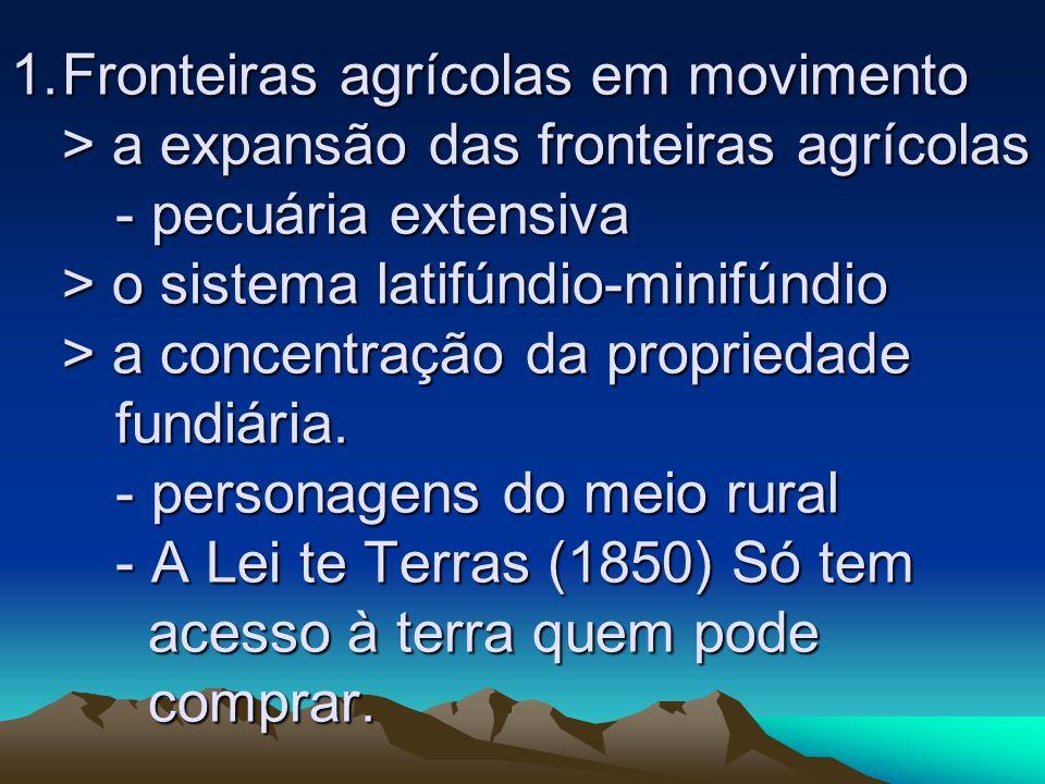 1.Fronteiras agrícolas em movimento > a expansão das fronteiras agrícolas - pecuária extensiva > o sistema latifúndio-minifúndio > a concentração da p