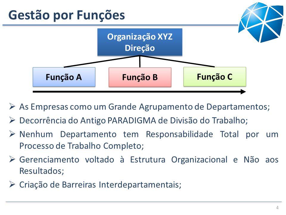 Gestão por Funções As Empresas como um Grande Agrupamento de Departamentos; Decorrência do Antigo PARADIGMA de Divisão do Trabalho; Nenhum Departament