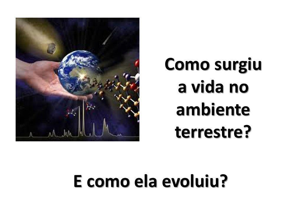 E como ela evoluiu? Como surgiu a vida no ambiente terrestre?