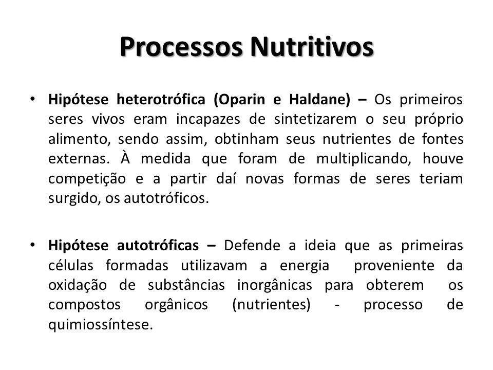Processos Nutritivos Hipótese heterotrófica (Oparin e Haldane) – Os primeiros seres vivos eram incapazes de sintetizarem o seu próprio alimento, sendo