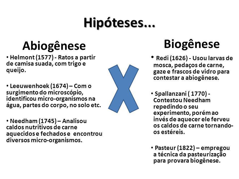 Experimentos que contestaram a teoria da abiogênese... Redi (1626) @BIO333