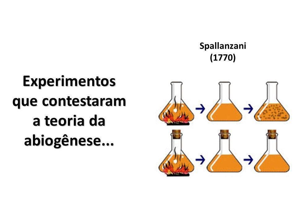 Experimentos que contestaram a teoria da abiogênese... Spallanzani (1770)
