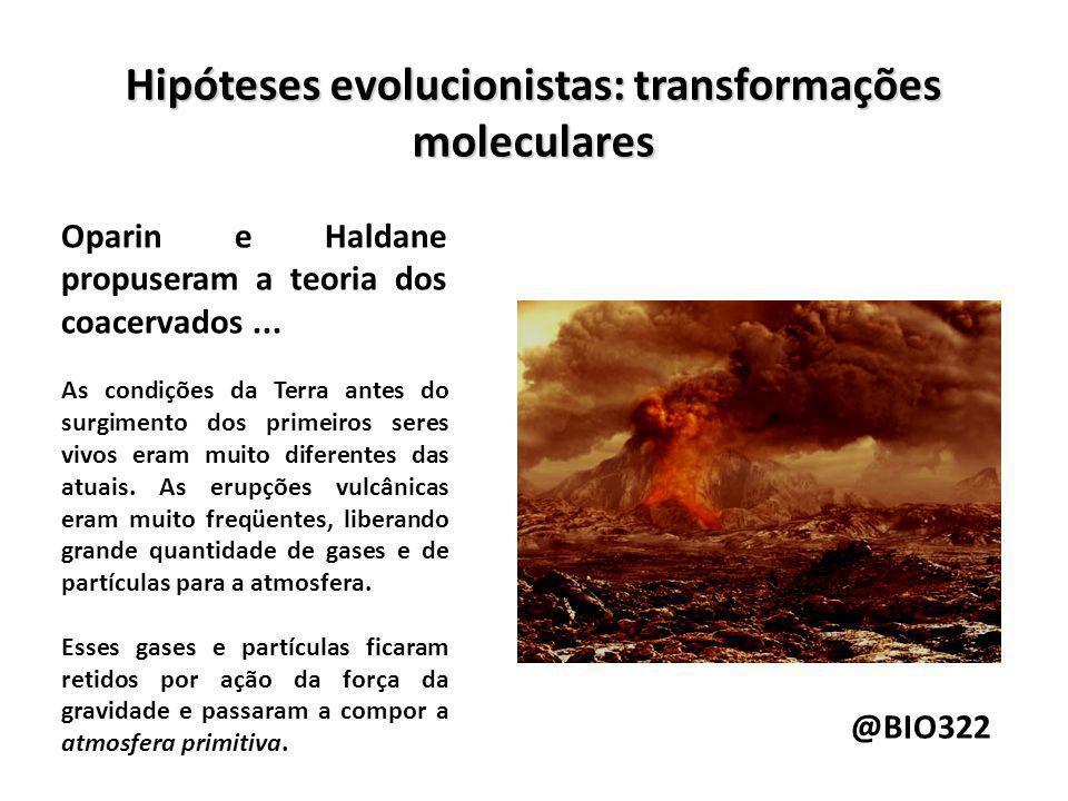 Hipóteses evolucionistas: transformações moleculares Provavelmente a atmosfera primitiva era formada por metano (CH4), amônia (NH3), gás hidrogênio (H2) e vapor dágua (H2O).